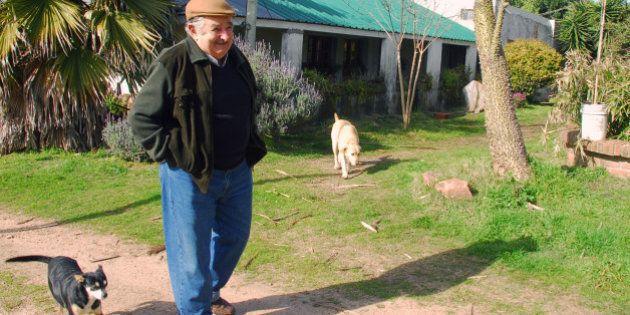 casa Mujica